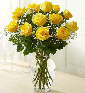 Rose Elegance; Premium Long Stem Yellow Roses